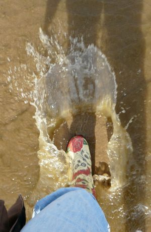 Big Wellington Boot Splash Photo