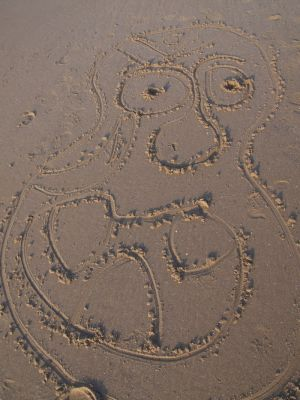 Funny Face Drawing in the Sand Image