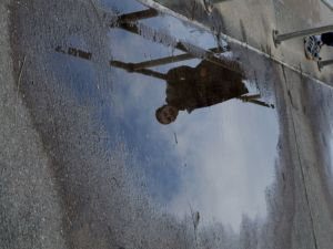 Puddle Reflection Photography