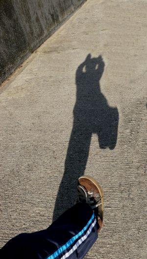 Shadow fun at Skegness Photo