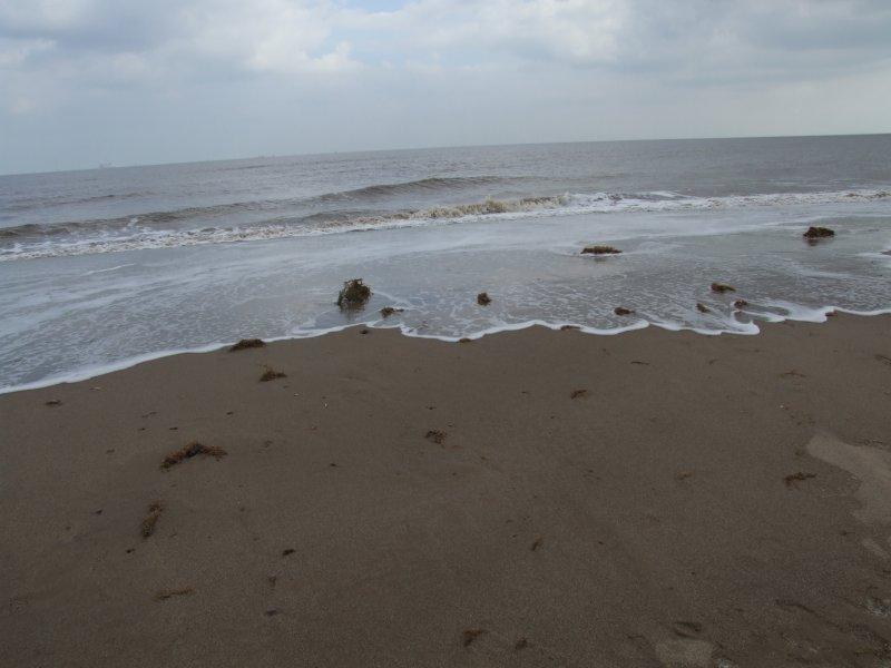 Salisbury Beach Tide Chart Rebellions