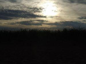 Sun Picture Photo