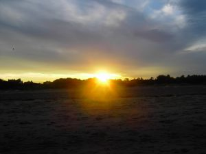 Yellow Sunset Picture